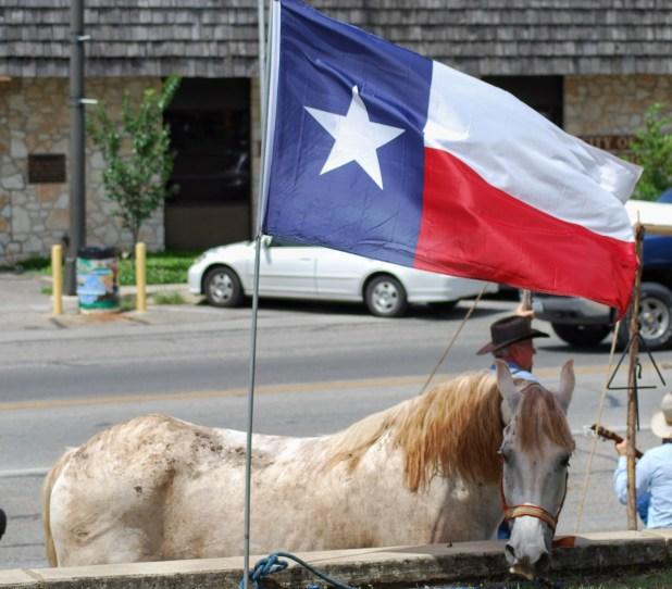 tx-flag-horse