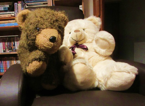 blog bears