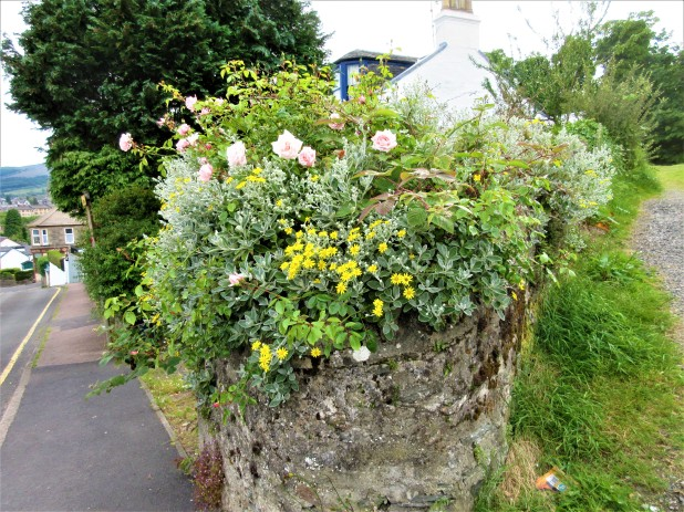 flowers curved rock fence